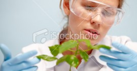 stock-photo-17672894-agronomist-with-plant